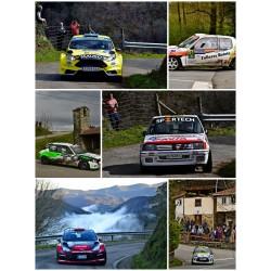 Rallye Villa de Tineo 2018...